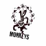 12 MONKEYS design